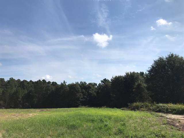 10 ac Fm 811, Centerville, TX 75833 (MLS #67218788) :: The Bly Team