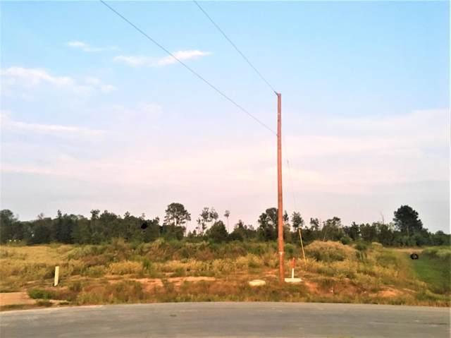 395 Road 5128, Cleveland, TX 77327 (MLS #67245174) :: Ellison Real Estate Team