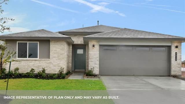 8007 Brahman Lane, Rosharon, TX 77583 (MLS #67257418) :: The Wendy Sherman Team