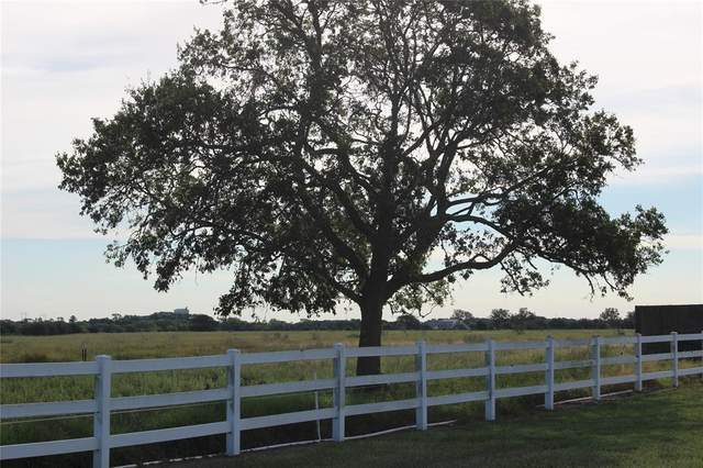 18 Lakeview Lane, Eagle Lake, TX 77434 (MLS #67438394) :: The Queen Team