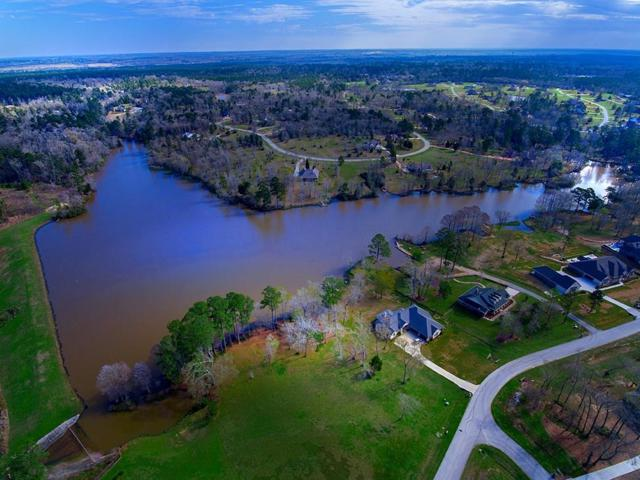 1409 Sapphire Shores, Willis, TX 77378 (MLS #67442498) :: The Home Branch