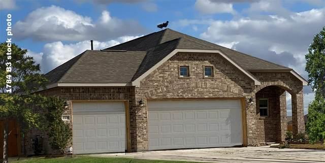 10314 Owens Lake Drive, Rosharon, TX 77583 (MLS #67491871) :: The Queen Team