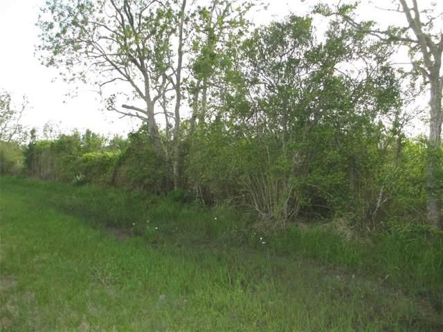 0 W 0 Bayshore, Anahuac, TX 77514 (MLS #67500565) :: The Home Branch
