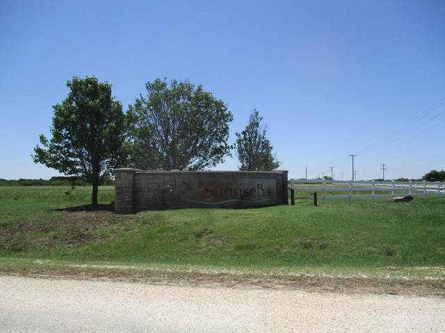 000 Windswept Drive, Port Lavaca, TX 77979 (MLS #67529371) :: Michele Harmon Team