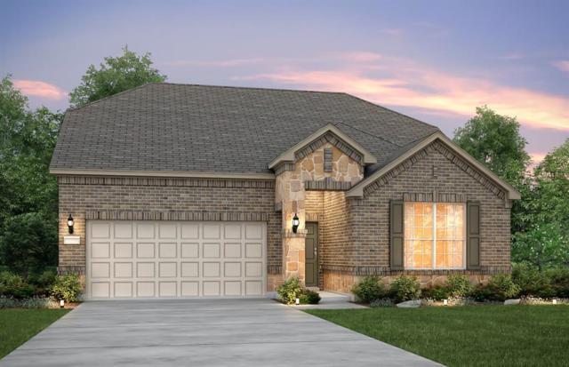 9703 Rocket Cress Court, Spring, TX 77379 (MLS #67644602) :: Giorgi Real Estate Group