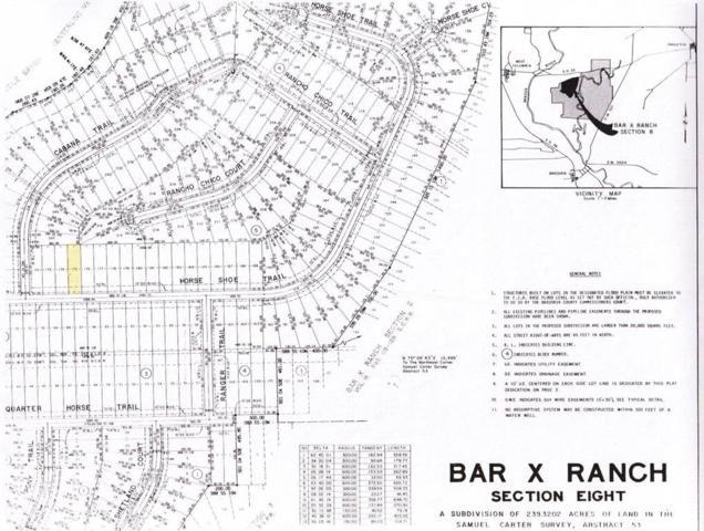 149 Horse Shoe Trail, Angleton, TX 77515 (MLS #67658434) :: Green Residential