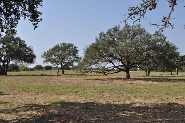 0000 Rice Road, Yoakum, TX 77995 (MLS #67679156) :: Christy Buck Team