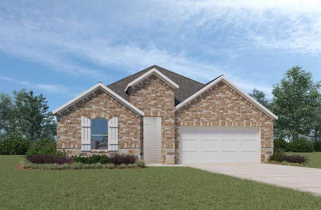 14132 Emory Peak Court, Conroe, TX 77384 (MLS #67818695) :: The SOLD by George Team