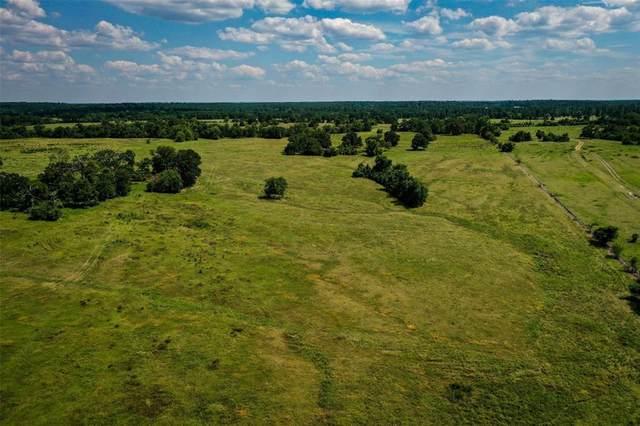 45 Acres State Hwy 30 W, Huntsville, TX 77340 (MLS #67847990) :: Michele Harmon Team
