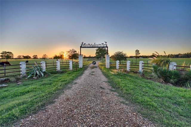 15993 Fm 1887 Road, Hempstead, TX 77445 (MLS #67850216) :: The SOLD by George Team