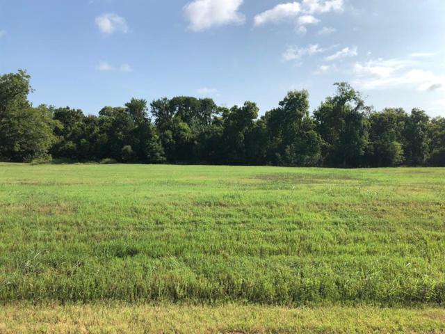 30811 Lower Oxbow Trace, Fulshear, TX 77441 (MLS #67873946) :: Texas Home Shop Realty