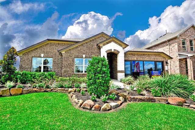 10110 Whitney Reach Drive, Rosharon, TX 77583 (MLS #67900570) :: The Jill Smith Team