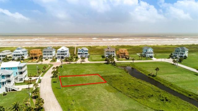 25722 Spotted Sandpiper Drive, Galveston, TX 77554 (MLS #67905459) :: The Bly Team