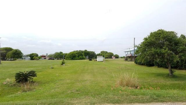 1369 Bayview Drive, Palacios, TX 77465 (MLS #67965271) :: The Parodi Team at Realty Associates