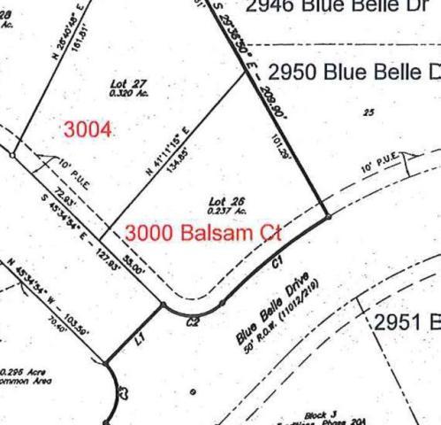 3000 Balsam Court, Bryan, TX 77807 (MLS #67987640) :: Ellison Real Estate Team
