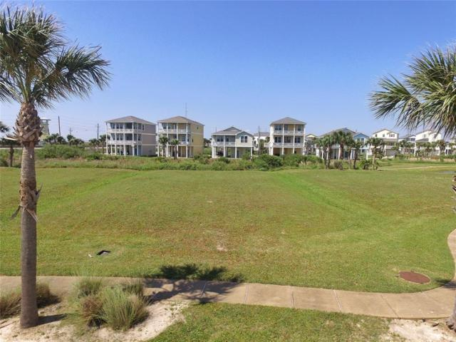 4115 Royal Tern Lane, Galveston, TX 77554 (MLS #67994909) :: Magnolia Realty