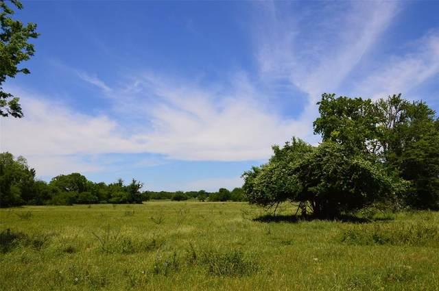0320 County Road 446, Navasota, TX 77868 (MLS #68023824) :: Michele Harmon Team