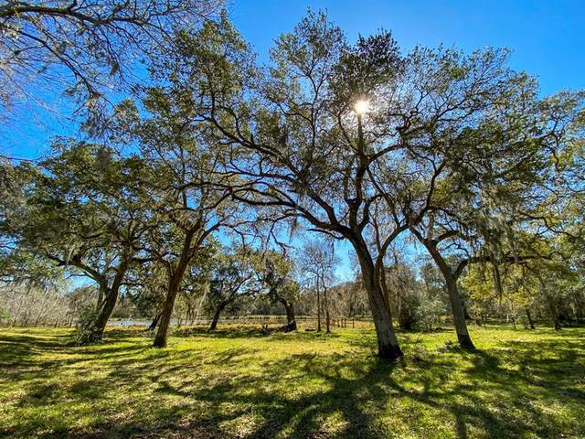 000 Forest Road, Damon, TX 77430 (MLS #68080506) :: The Queen Team