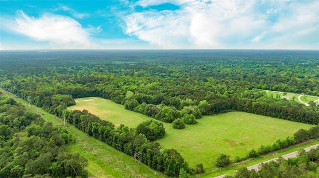 0 Hwy 61, Hankamer, TX 77560 (MLS #68109963) :: Connell Team with Better Homes and Gardens, Gary Greene