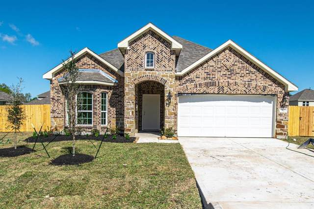 317 Gallant Fox Way, New Caney, TX 77357 (MLS #68227081) :: Connect Realty
