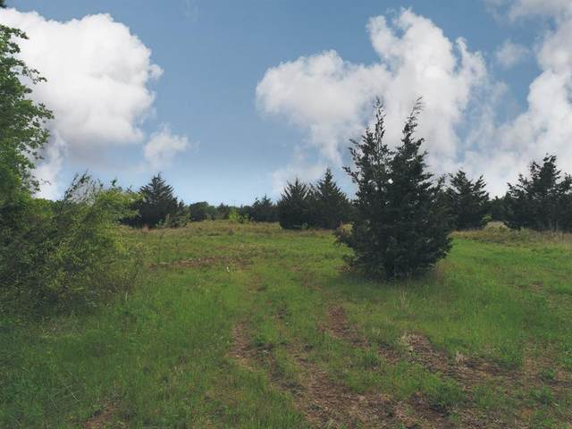 TBD-Tract 3 Cr 315, Chriesman, TX 77838 (#68288029) :: ORO Realty