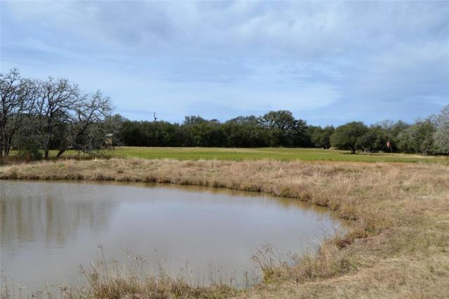 00 County Road 15A, Hallettsville, TX 77964 (MLS #68368460) :: The Heyl Group at Keller Williams