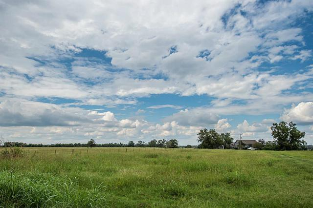 17082 S Highway 36, Wallis, TX 77485 (MLS #68400995) :: Magnolia Realty
