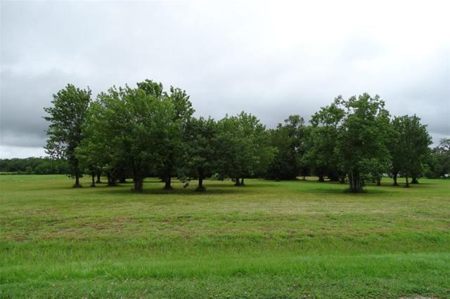 1110 Sunset Road, Rosharon, TX 77583 (MLS #68474676) :: Giorgi Real Estate Group