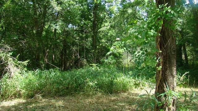 1309 Woodvine, Friendswood, TX 77546 (MLS #68475442) :: Guevara Backman
