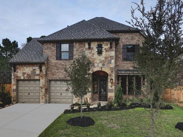 16 Alamito Canyon, The Woodlands, TX 77354 (MLS #68476333) :: Team Parodi at Realty Associates