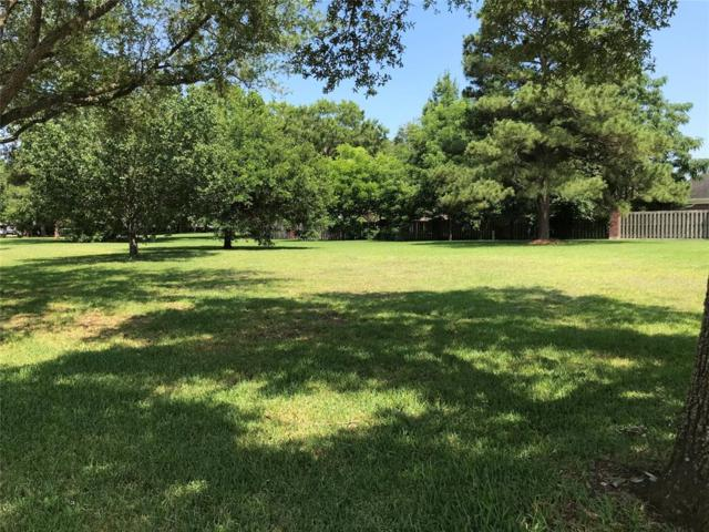 1314 Bluebonnet Drive, Seabrook, TX 77586 (MLS #68509169) :: The SOLD by George Team