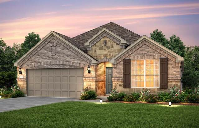 9743 Birdsnest Court, Spring, TX 77379 (MLS #6851049) :: The Parodi Team at Realty Associates