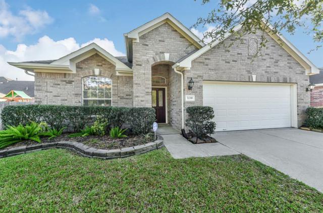 7239 Rambling Tree Lane, Richmond, TX 77407 (MLS #68621138) :: Texas Home Shop Realty