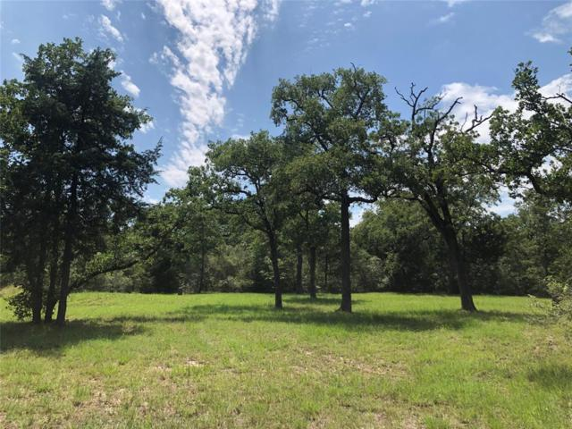 590 Oak Forest Drive, Snook, TX 77878 (MLS #68726598) :: Texas Home Shop Realty