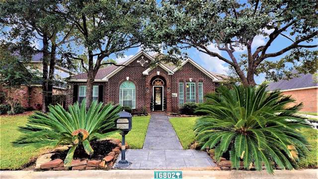 16802 Park Island Court, Tomball, TX 77377 (MLS #68728945) :: The SOLD by George Team
