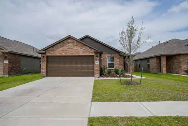 5514 Casa Mila Drive, Katy, TX 77449 (MLS #68796153) :: Christy Buck Team