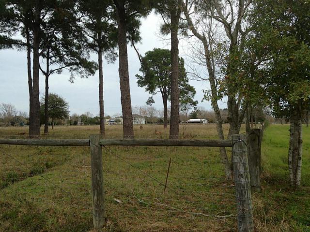 0 N North Mallard, Fulshear, TX 77441 (MLS #68819165) :: Lion Realty Group/Clayton Nash Real Estate