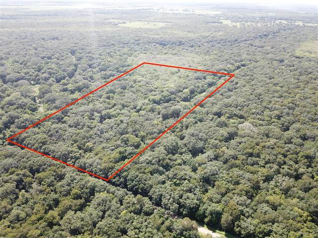 Tract 5 Private Road 648 Street, Cedar Lake, TX 77425 (MLS #68919054) :: The Freund Group