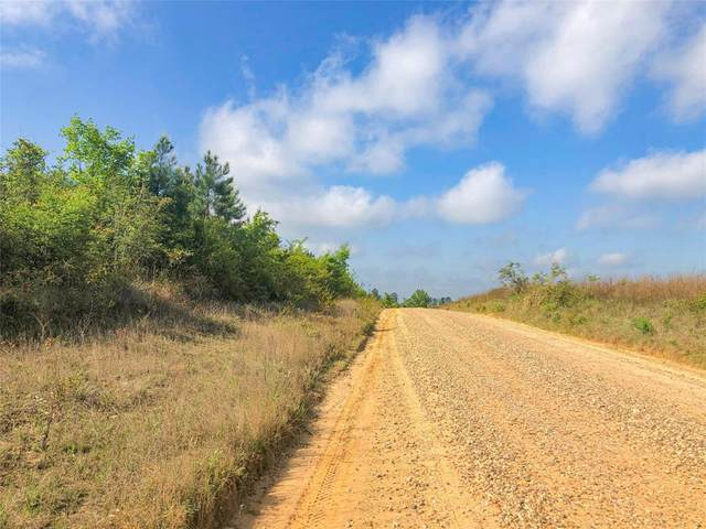 000000 Stutts Hill Road, Livingston, TX 77351 (MLS #68989735) :: Connect Realty