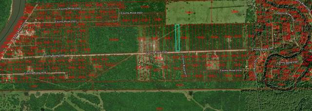 0 County Rd 2500, Liberty, TX 77575 (MLS #69088902) :: All Cities USA Realty