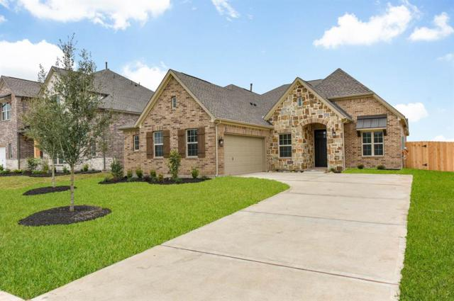 10118 Whitney Reach Drive, Rosharon, TX 77583 (MLS #69122247) :: JL Realty Team at Coldwell Banker, United