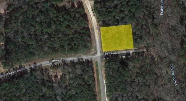 Lot 108 Feldspar Lane, New Waverly, TX 77340 (MLS #69200157) :: Ellison Real Estate Team