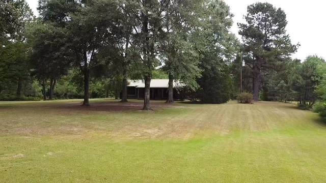 546 County Road 2150, Woodville, TX 75979 (MLS #69209726) :: All Cities USA Realty