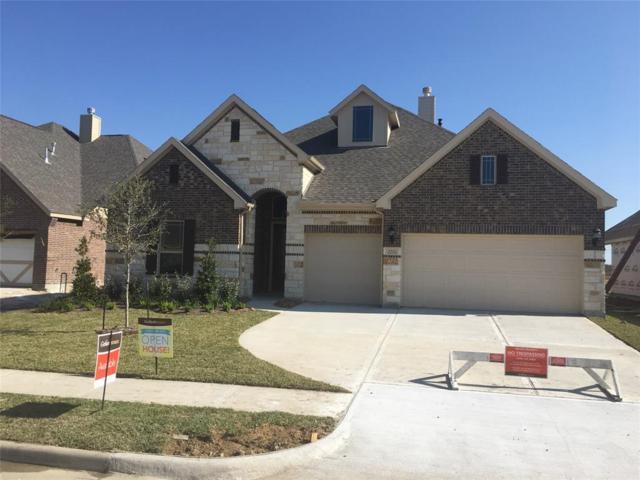 3701 White Wing Ln, Deer Park, TX 77536 (MLS #69259202) :: The SOLD by George Team