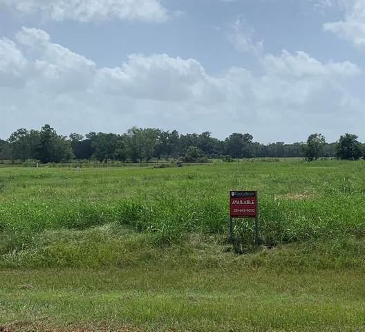 1138 Lakeland Circle, Rosharon, TX 77583 (MLS #69279006) :: Green Residential
