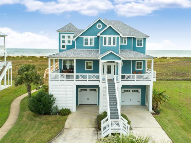 25703 Snowy Egret Drive, Galveston, TX 77554 (MLS #69289894) :: The SOLD by George Team