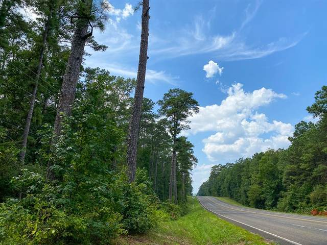 00 Hwy 150, Coldspring, TX 77331 (MLS #69297846) :: All Cities USA Realty