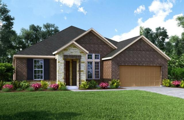 20119 Desert Foal Drive, Tomball, TX 77377 (MLS #69387391) :: Magnolia Realty