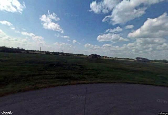 18626 Cypress Hill, Rosharon, TX 77583 (MLS #69476212) :: Christy Buck Team