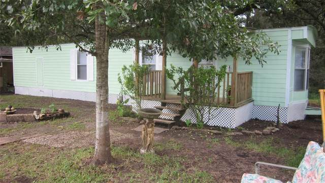 20250 San Bernard Drive, Guy, TX 77444 (MLS #69499477) :: The Home Branch